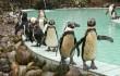 Zoo Besuch / Ausflug zur ZOOM Erlebniswelt 2017